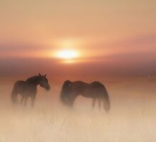 Horses in a misty dawn'... by Valerie Anne Kelly