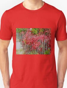 Virginia Creeper on Dune Fence - Fall Colors T-Shirt