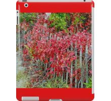 Virginia Creeper on Dune Fence - Fall Colors iPad Case/Skin