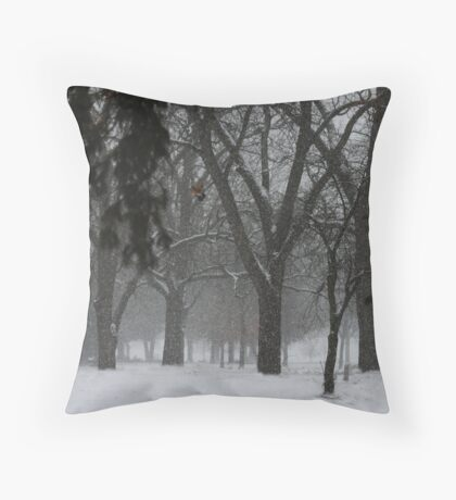 And A Robin Flees Throw Pillow