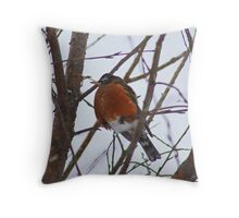 Waiting The Storm Out Throw Pillow