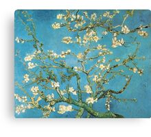 Vincent van Gogh, Blossoming Almond Tree Canvas Print