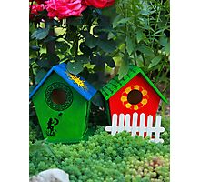 Two small birdhouses in a garden Photographic Print