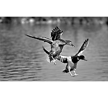 His and hers landings Photographic Print