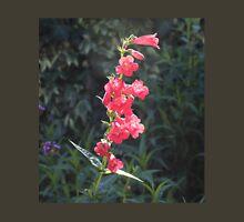 Sunlit Pink Penstemon Flower Unisex T-Shirt