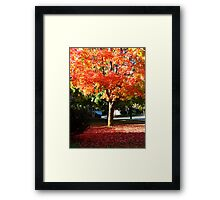 Flames above and below Framed Print