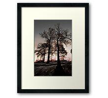 Long Shadows Framed Print