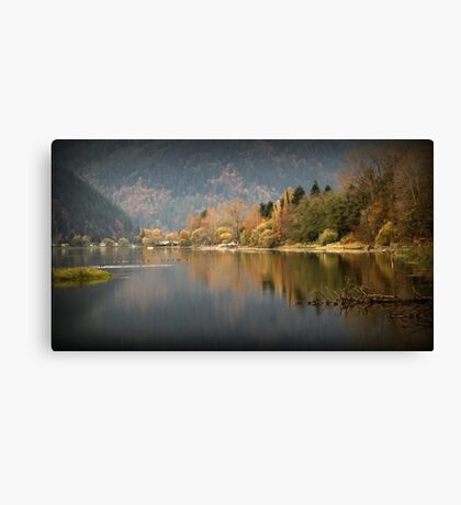 Resting Ducks in the Fall Canvas Print