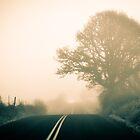 Foggy Morning Drive 02 by RIDGEWORKS