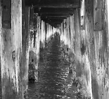 Under the Pier by searchlight