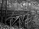 Long Wooden Footbridge by Marcia Rubin