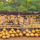 Pumpkin market near Mombasa, Kenya by Atanas NASKO