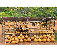 Pumpkin market near Mombasa, Kenya Photographic Print