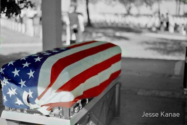 Fallen Soldier by Jesse Kanae