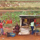Street vendors selling tomatoes near Mombasa, Kenya by Atanas NASKO