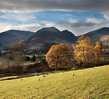 Hindscarth and Robinson from the Newlands Valley by SteveMG