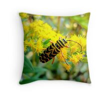Painted Beetle Throw Pillow