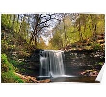 Greening Trees at Harrison Wright Falls Poster