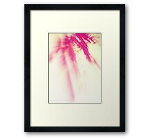 RAPTURE ROSE  II Framed Print
