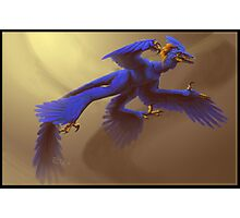 Blue Microraptor Photographic Print