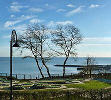 Overlooking Mini Golf At Lyme by lynn carter