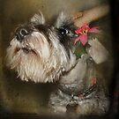 I Love Holidays :::sigh::: by Kay Kempton Raade