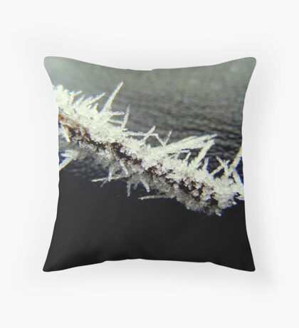 Icey twigg. Throw Pillow