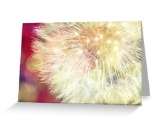 Simple dandelion Greeting Card