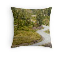 Curvy Road to Artist Point Throw Pillow