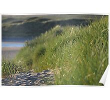 Lahinch Dunes Poster