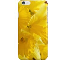 Daffodils, As Is iPhone Case/Skin