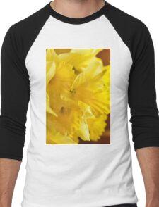 Daffodils, As Is Men's Baseball ¾ T-Shirt
