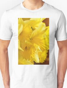 Daffodils, As Is T-Shirt