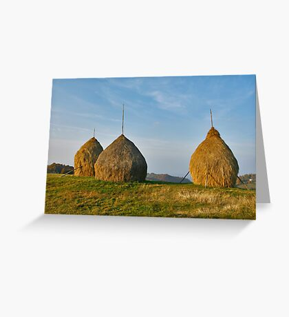 Hay Stockpiles Greeting Card