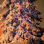 Oh Christmas Tree - Golden, Colorado by Teresa Smith