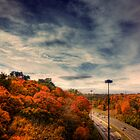 Leaside Fall by Jason Allies