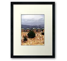 Little Country Surprise!!! Framed Print