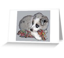 cute fluffy little border collie pup Greeting Card