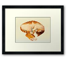 all around Framed Print