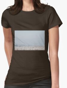 Freezing Cold Weather Womens Fitted T-Shirt