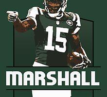 Brandon Marshall - New York Jets by twyland