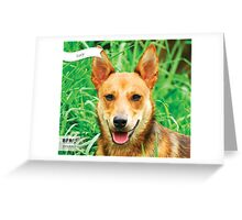 Lucy :: by Wet Nose Fotos Greeting Card