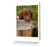 Height of Innocence Greeting Card