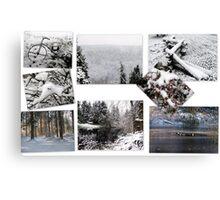 Washington Winter Canvas Print