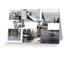 Winter in Wasihngton Greeting Card