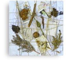 Paper & Nature Collage (DisCo Reveal) Canvas Print