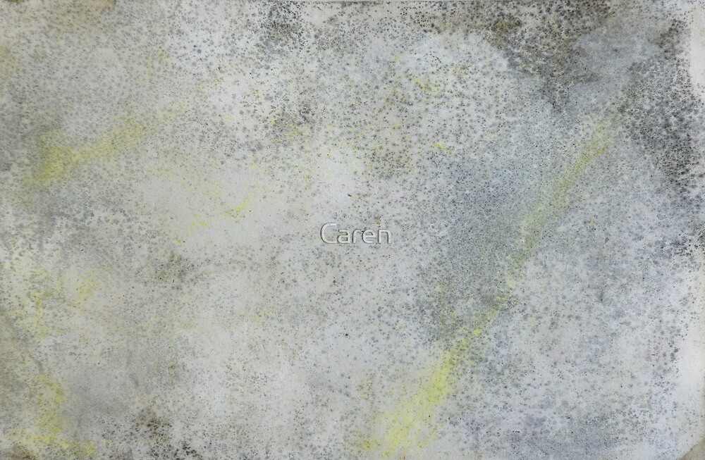 Mold on Paper by Caren