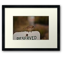 You can't park here, that's my spot! Framed Print