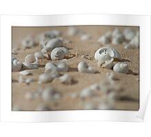 Dune Jewels Poster