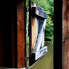 View out from Mabry Mill, Virginia by Melinda Watson
